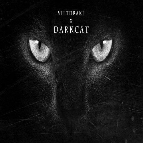Dark Cat by VietDrake