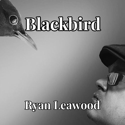 Blackbird de Ryan Leawood