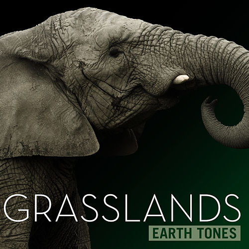 Earth Tones: Grasslands by Various Artists