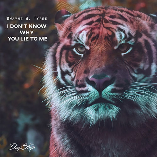 I Don't Know Why You Lie To Me by Dwayne W. Tyree