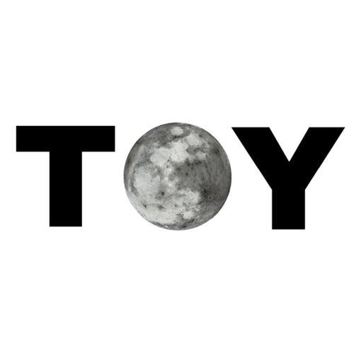 Toy von Dan Brown (Hörbuch)