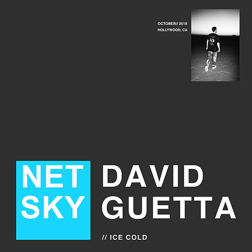 Ice Cold von Netsky & David Guetta