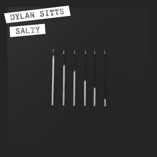 Salty de Dylan Sitts