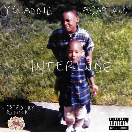 The interlude von Various Artists