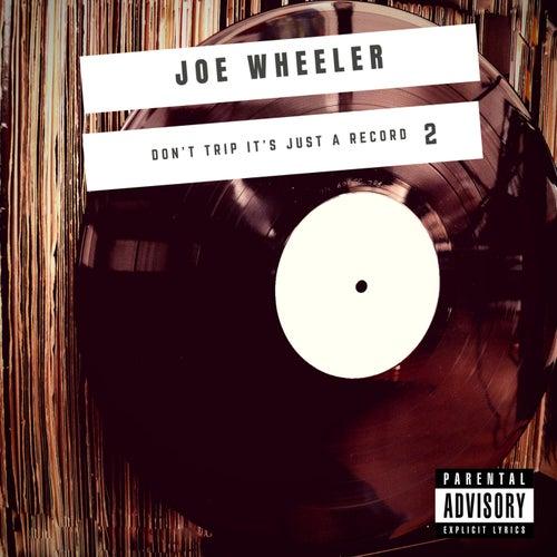 Don't Trip It's Just a Record 2 de Joe Wheeler