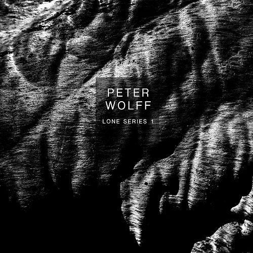 Lone Series 1: Swarm by Peter Wolff