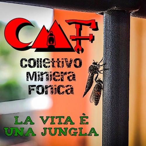 La Vita è una jungla by CMF - Collettivo Miniera Fonica