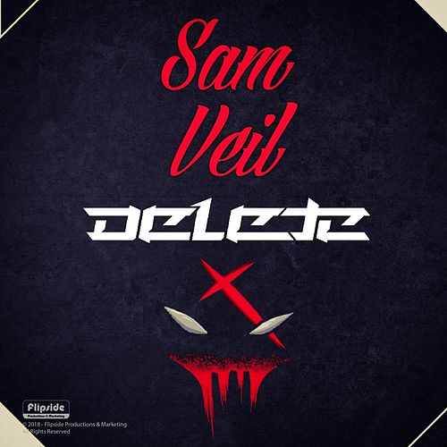 Delete by Sam Veil