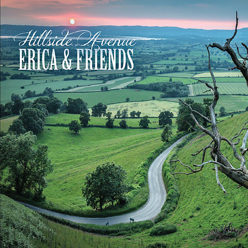 Hillside Avenue by Erica