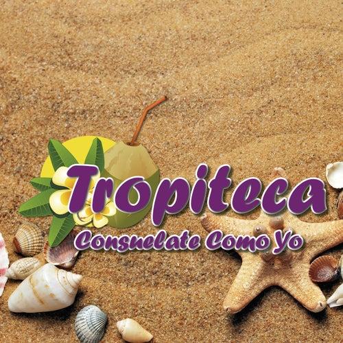 Tropiteca / Consuelate Como Yo de Various Artists