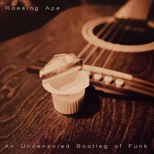 An Uncensored Bootleg of Funk by Roesing Ape