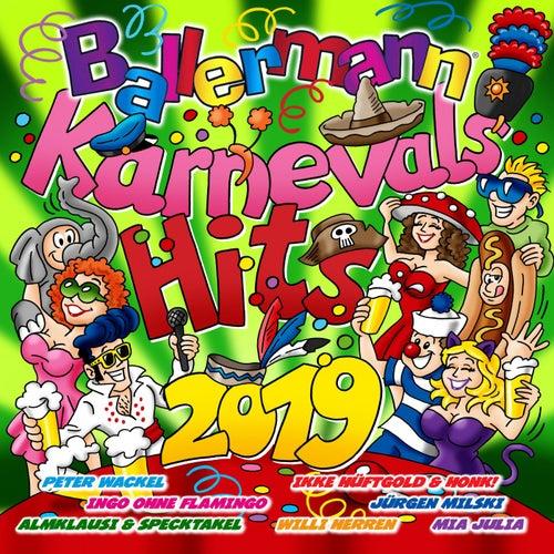 Ballermann Karnevals Hits 2019 von Various Artists