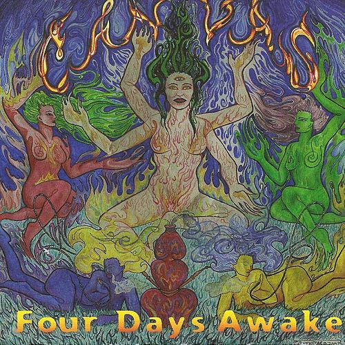 Four Days Awake by Canvas