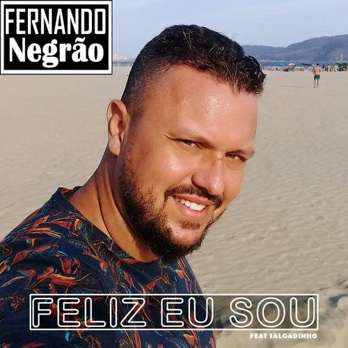 Feliz Eu Sou de Fernando Negrão