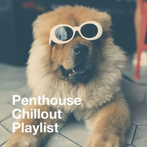 Penthouse Chillout Playlist von Various Artists