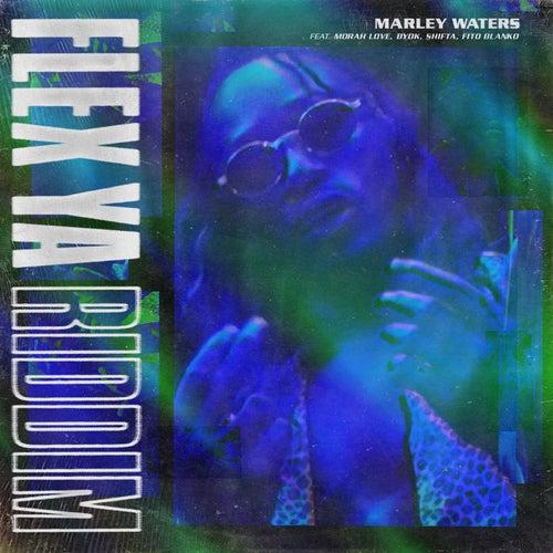 Flex Ya Riddim de Marley Waters