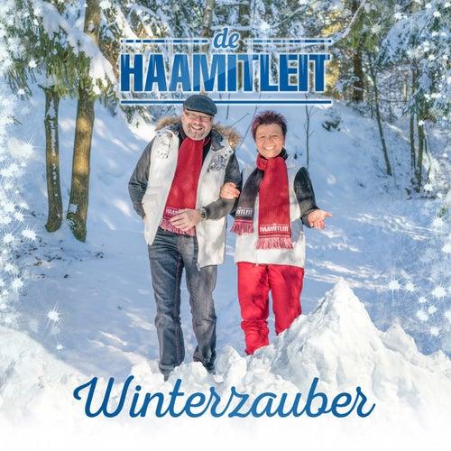 Winterzauber von De Haamitleit