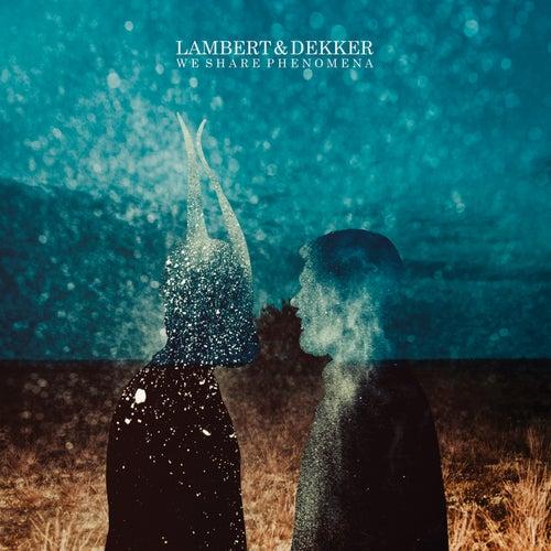 We Share Phenomena by Lambert