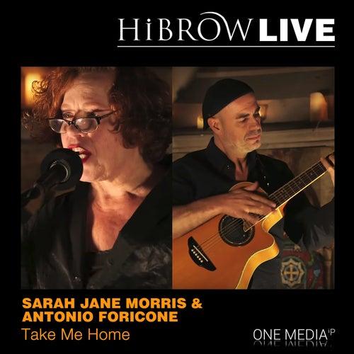 Take Me Home de Sarah Jane Morris