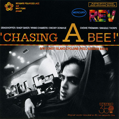 Chasing a Bee de Mercury Rev