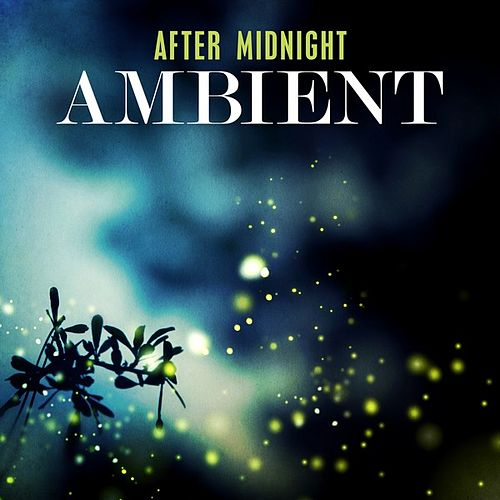 After Midnight: Ambient de Various Artists