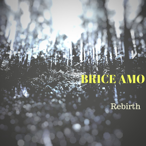Rebirth by Brice AMO