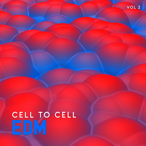 EDM Cell to Cell, Vol. 2 by Various Artists