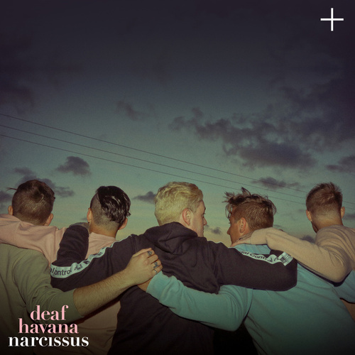 Narcissus by Deaf Havana