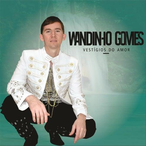 Vestígios do Amor de Wandinho Gomes