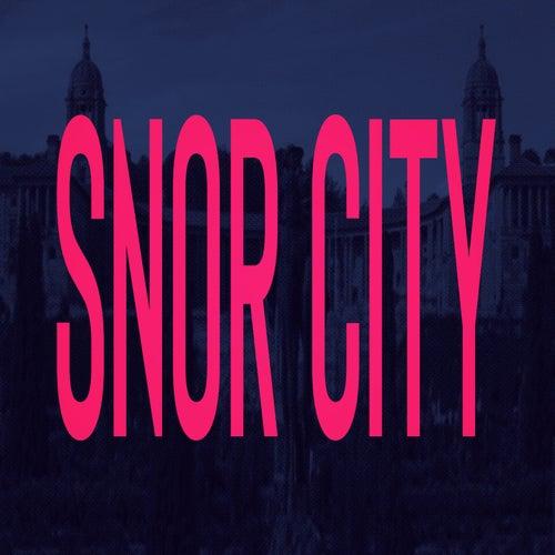Snor City by Francois van Coke