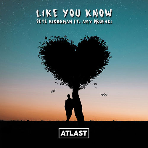 Like You Know (feat. Amelia) von Pete Kingsman