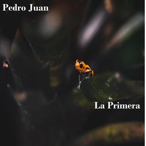 La primera by Pedro Juan