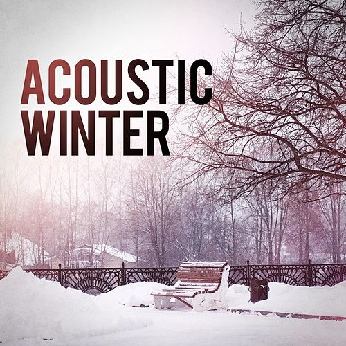 Acoustic Winter by Various Artists