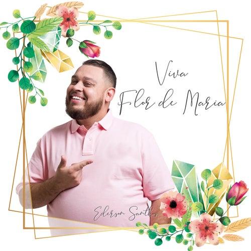 Viva Flor de Maria von Ederson Santhos