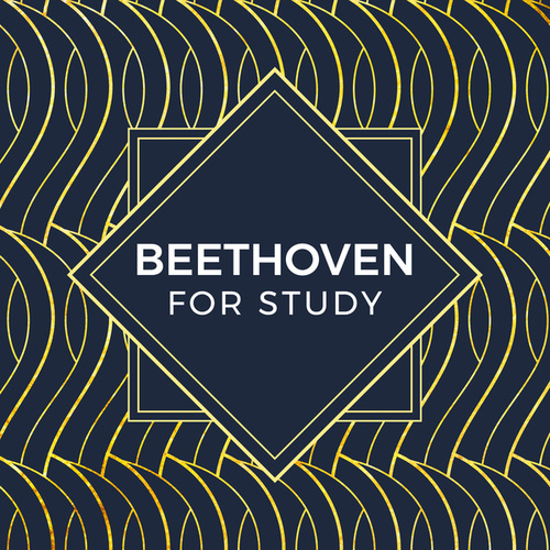 Beethoven For Study by Various Artists