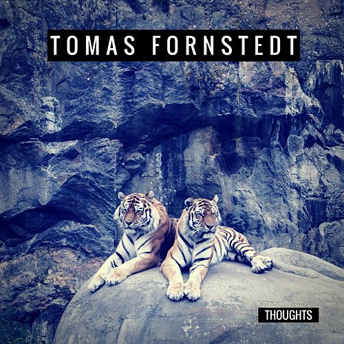 Thoughts by Tomas Fornstedt