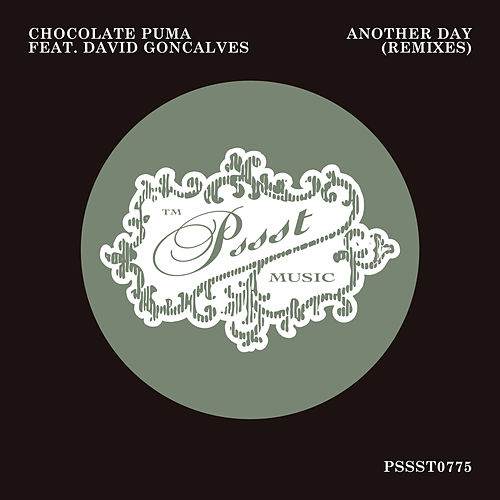 Another Day (Remixes) von Chocolate Puma