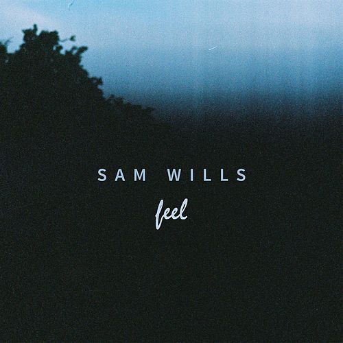 Feel by Sam Wills
