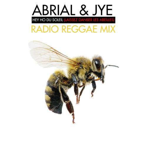 Hey Ho Du Soleil (Laissez Danser Les Abeilles) (dub remix) von Abrial