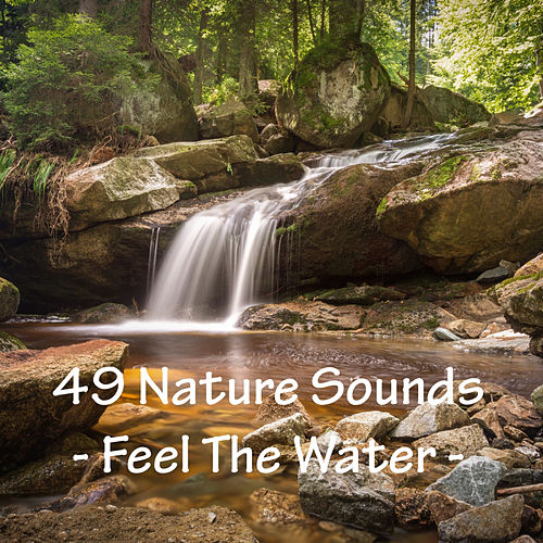 49 Nature Sounds - Feel The River by Nature Sounds (1)