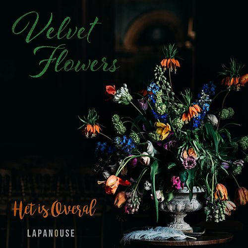 Velvet Flowers by Het is overal