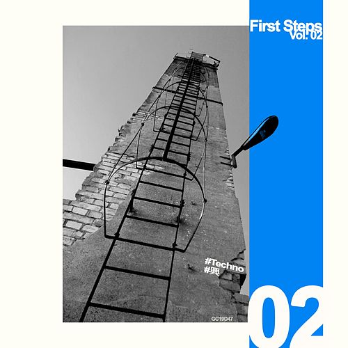 First Steps, Vol. 02 by Vojeet