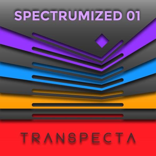 Spectrumized 01 (Mixed by Darko De Jan) von Various Artists