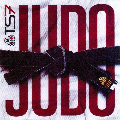 Judo von Ts7