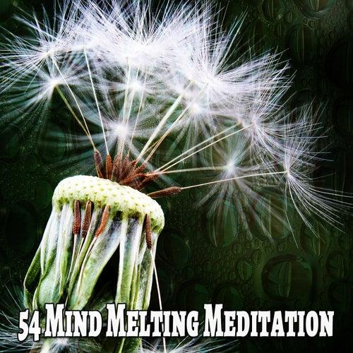 54 Mind Melting Meditation de Massage Tribe