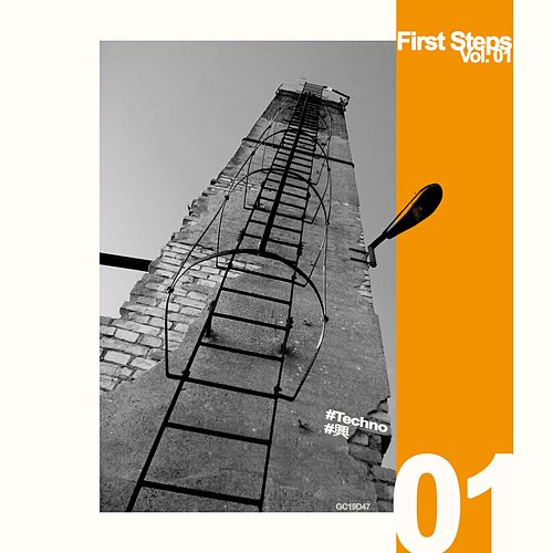 First Steps, Vol. 01 by Vojeet