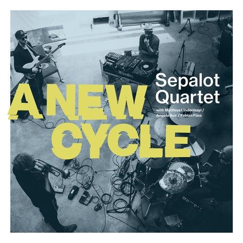 Can't Feel Nothing - Live de Sepalot