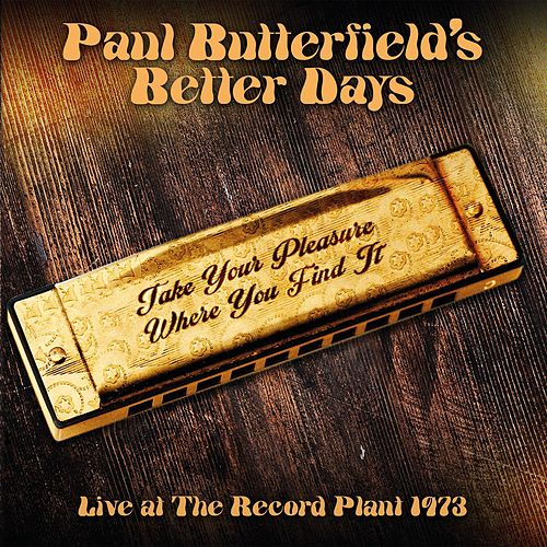 Take Your Pleasure Where You Find It de Paul Butterfield