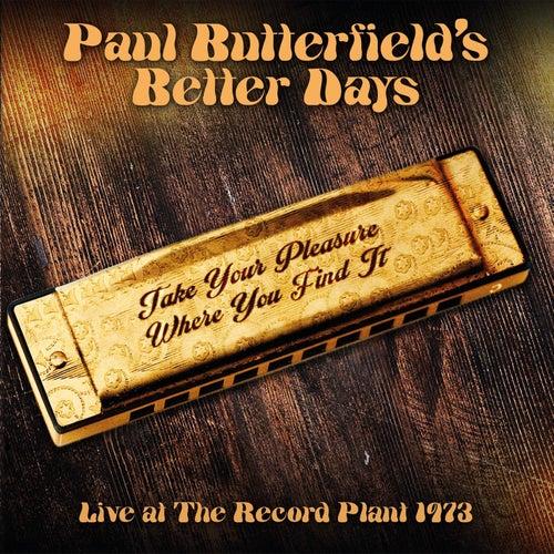 Take Your Pleasure Where You Find It de Paul Butterfield