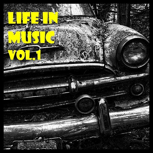 Life In Music Vol.1 von Anne-Caroline Joy